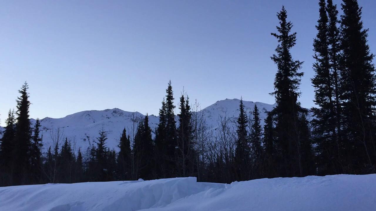 """Cameras in the Mist"" Part II -  Wiseman, Alaska - March 22 2015"