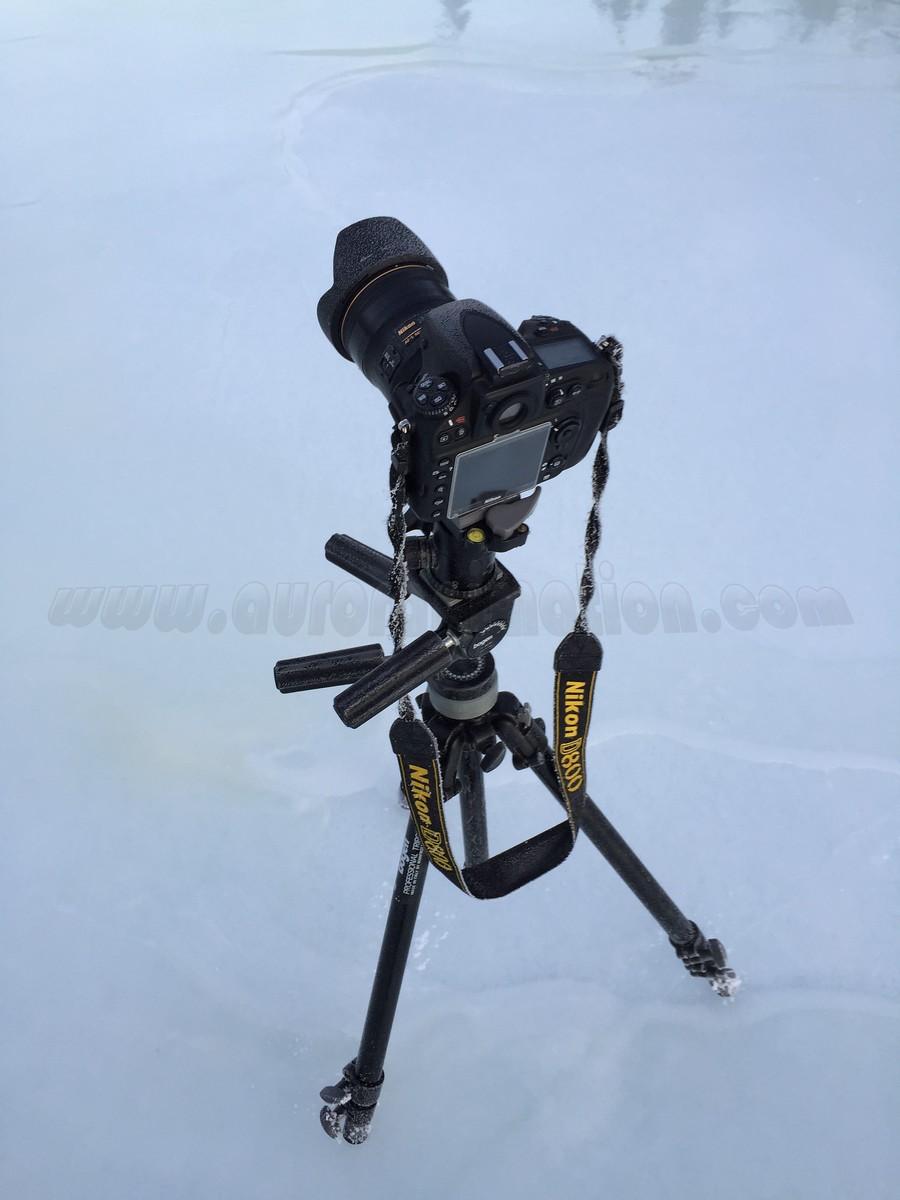 Nikon D800 at Dawn