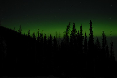 I was trying to get the trees in sharp focus with the Aurora dancing behind, but didn't have much luck with it.