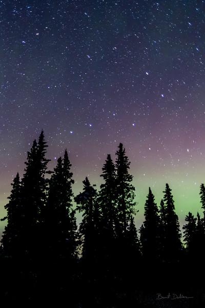 Pastel Aurora.CR2
