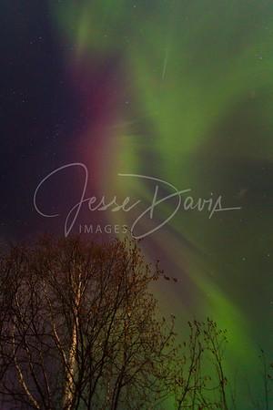 20141110, Alaska Aurora (some coronas)