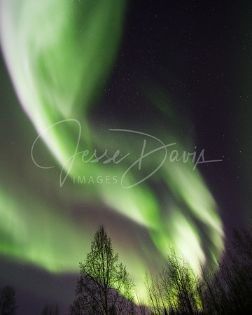 20141114--Aurora, North Pole, AK