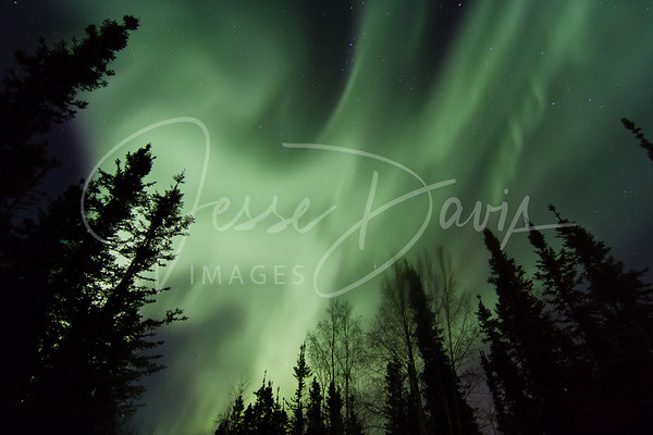 20141115-16--Aurora over Chena Lake, North Pole, AK