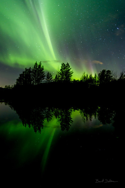 Auroral Reflections