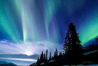 Alpine Aurora