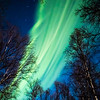 Auroral Flow