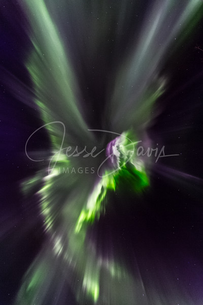 Hummingbird Aurora, new edits, larger file size for LARGE prints