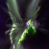 Hummingbird Aurora, new edits, larger file size for LARGE prints