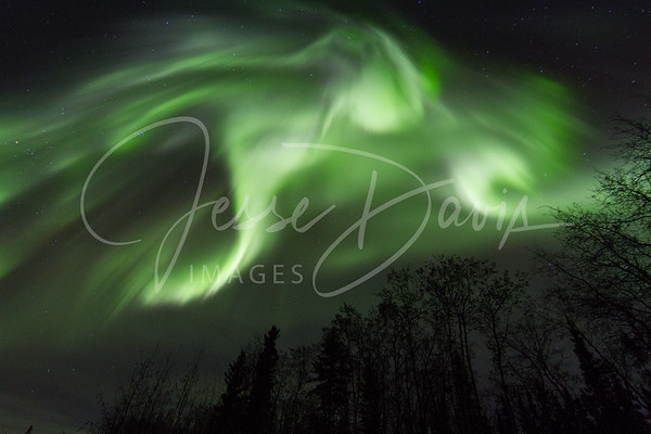 Awesome Aurora over Chena Lakes, 30 Oct 2013.