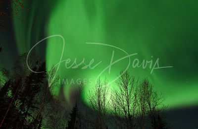 Northern Lights, 23 Nov 12 (Black Friday)