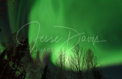 Northern Lights, 23 Nov 12 (Black Friday)