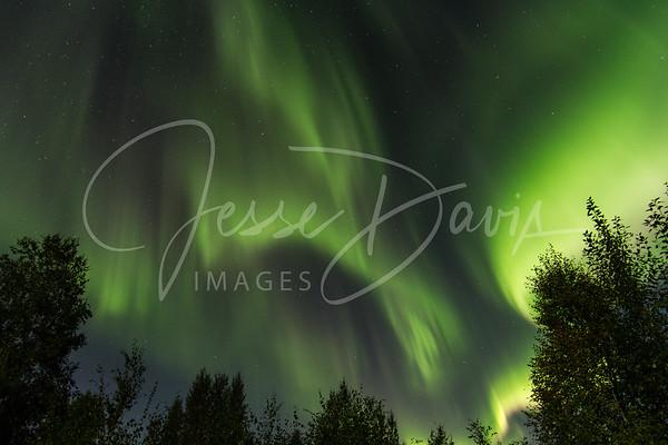 Northern Lights, 25 Aug 2013
