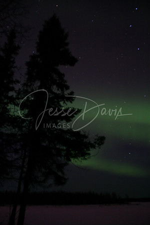 Northern Lights, Chena Lakes, 15 Mar 2012