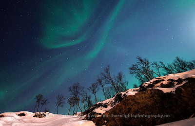 Auroras on a Moonlit Night, Norway