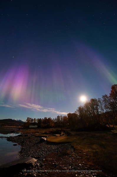 Purple Autumn Auroras and Harvest Moon, Norway