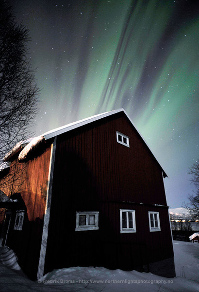 Stars and Stripes, Norway