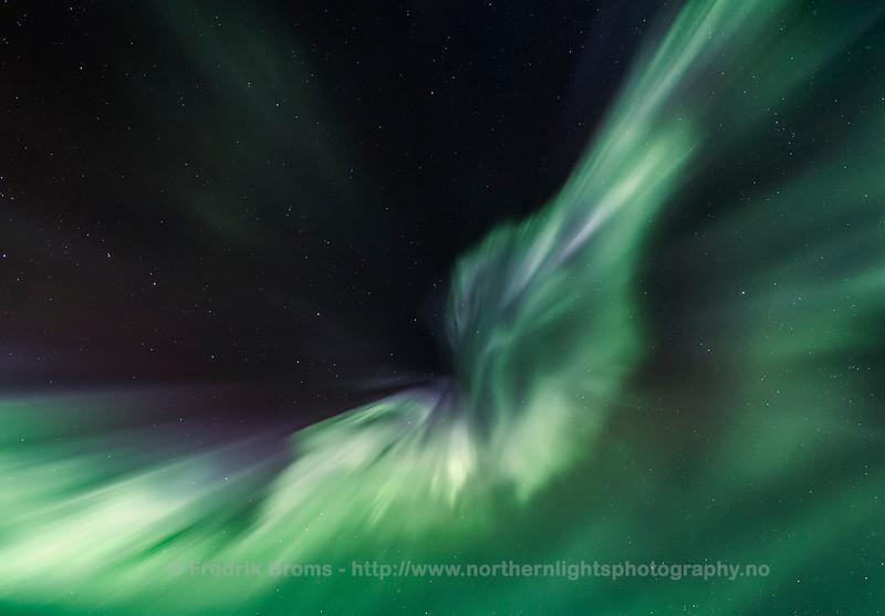 Aurora Butterfly, Norway