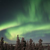 Curtains of northern lights illuminate the sky north of Fairbanks.