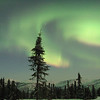 Credit: Jesse Carlstrom/FCVB<br /> <br /> The aurora borealis lights up the night sky near Fairbanks, AK.