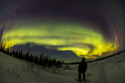 Under the Northern Lights in Churchill
