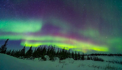 Pastel Aurora Panorama