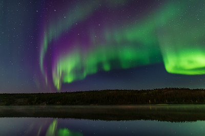 Auroral Colours in Twilight