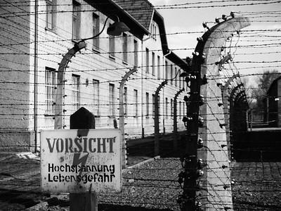 Auschwitz 2010