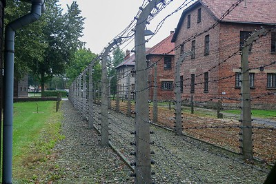 Auschwitz was a combination of deplorable prison cells, forced labor facilities, gas chambers, execution courtyards, gruesome experimental labs and torture rooms. Birkinau was simply an execution plant with rudimentary holding areas for the condemned.