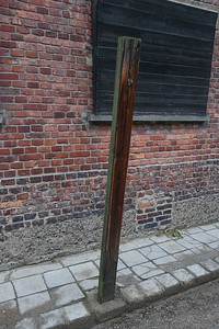 Another wicked punishment metered out by the courts at Auschwitz. People were hung from the hooks on these poles from their hands which were tied behind their back, usually breaking their arms/shoulder sockets with their own weight. This torture technique was so painful that even Heinrich Himler decided it was too much, and had the practice discontinued in 1942. It occurred at other camps as well.