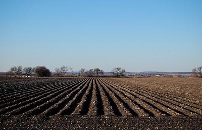 field in Hutto