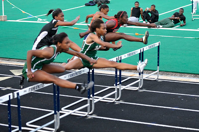 6x4 #4115 (phylicia 110 h)