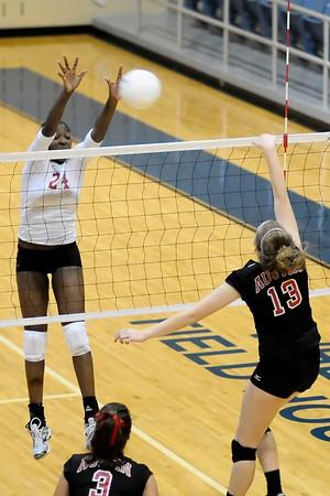 2009 AHS volleyball