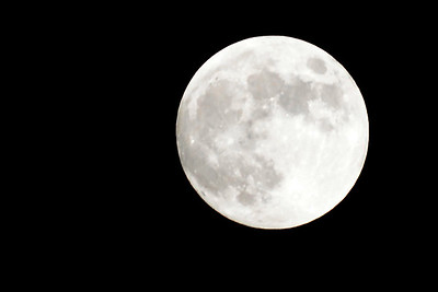 6x4 #6269 (full moon)