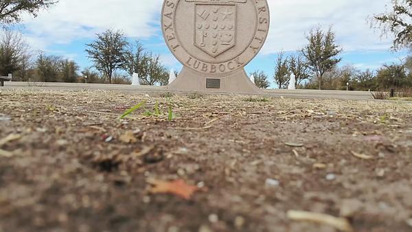 Seal of Texas Tech-30