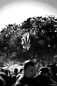 4/21/12 Austin Reggae Festival