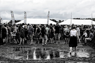 Waterloo 2018 Music Festival