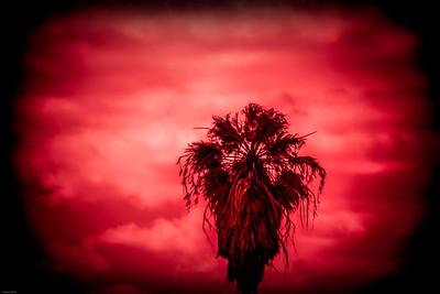 South Padre Island 2014