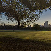 Zilker & Downtown Sunrise 1