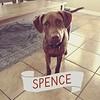 Spence - 9/28/18
