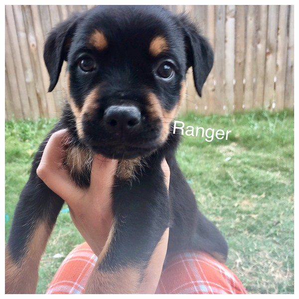 Ranger Jamie Rivera 5/18/17