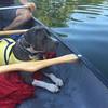 Maddie - Canoe - 8/21/2017 - Katie Sternberg