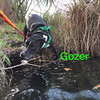 Gozer - 3/10/18 - Robert Guthrie
