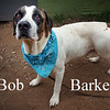 Bob Barker - 06/03/2018 - Title
