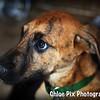 Denny-8/22/10-Chloe Pix Photography