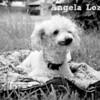 Satin_09/18/10_Angela_Lozano