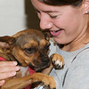 Daisy with potential adopter, 9/8/10, Sylvia Cavazos-Malamon