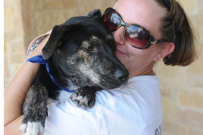 Bella_061910_Stuart Phillips d/b/a Grateful Dog Photography