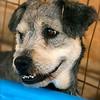 Bobbie - 08/12/2010 - Summer Huggins