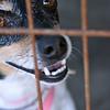 Sundae - 09/28/2010 - Summer Huggins