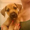 Princess Zabryna - 7/19/10 - Samantha Kerr